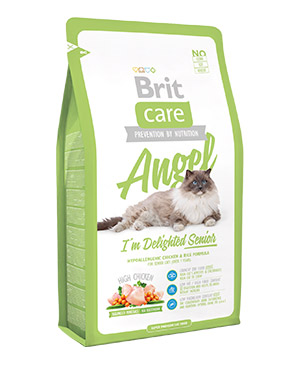 brit_care_angel_cat