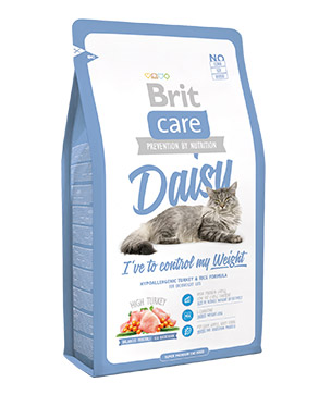brit_care_daisy_cat