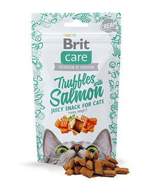 cat_snack_truffles_salmon